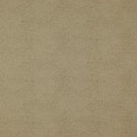 CELESTE — 10664_10