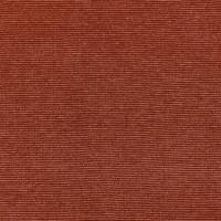 RAPHIA — 10713_53